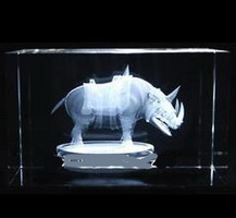 Rhino 3d laser crystal glass block