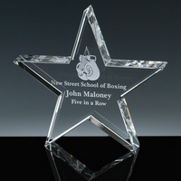 star crystal award with company logo engraved